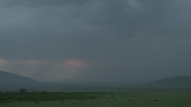 Long shot of a rainstorm travelling over the Serengeti National Park.