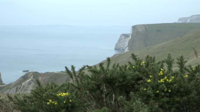 Long shot of a section of the Dorset coastline.