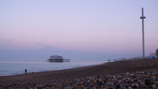 long shot of a woman walking her dog along brighton beach at dawn. - dog walker stock videos and b-roll footage