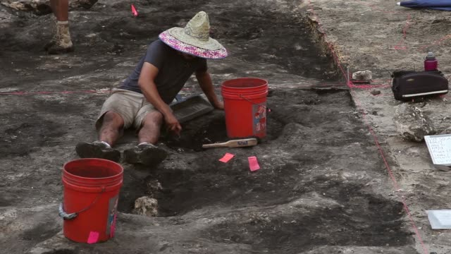 long shot of an archeologist digging at the excavation site archaeologists with the archaeological and historical conservancy work on excavating a... - baufahrzeug stock-videos und b-roll-filmmaterial