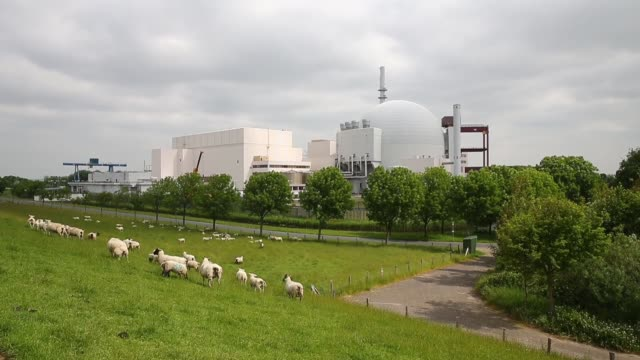 long shot of brokdorf power plant and grazing sheep nuclear power plant brokdorf on june 10 2013 in glueckstadt federal republic of germany - kernenergie stock-videos und b-roll-filmmaterial
