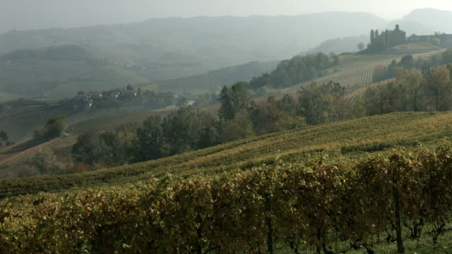 long shot of colorful vineyards and a castle in autumn - piemonte video stock e b–roll