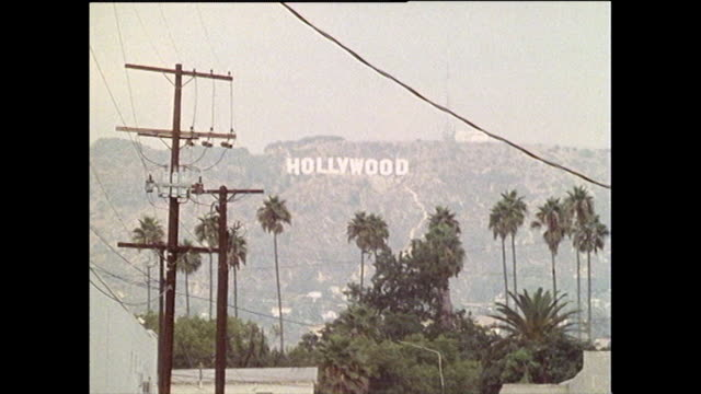 long shot of hollywood sign and palm-lined street; 1986 - hollywood los angeles video stock e b–roll