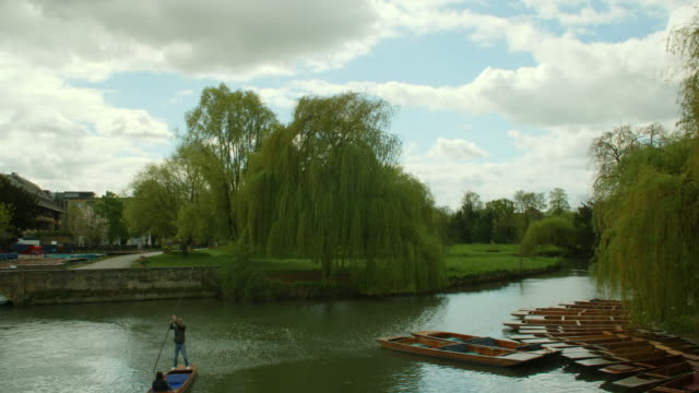 long shot of people punting along the river cam, cambridge. - cambridge england stock videos and b-roll footage