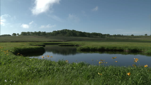 Long shot of the Uryu-numa Wetlands