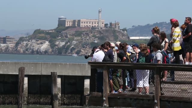 stockvideo's en b-roll-footage met long shot of tourist watching sea lions basking in the sun as pier 39 sea lions at san francisco's pier 39 on may 31 2013 in san francisco california - pier 39