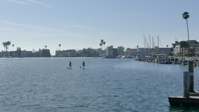vídeos de stock e filmes b-roll de long shot of two paddle boarders a young man and young woman in the belmont shores marina naples island long beach california - meio dia