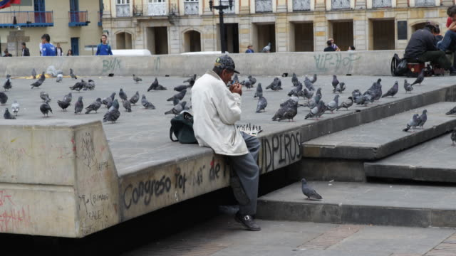 long shot on eye level of an old man sitting on the plaza de bol��var lighting a cigarette and playing chess, surrounded by pigeons. - var stock videos & royalty-free footage