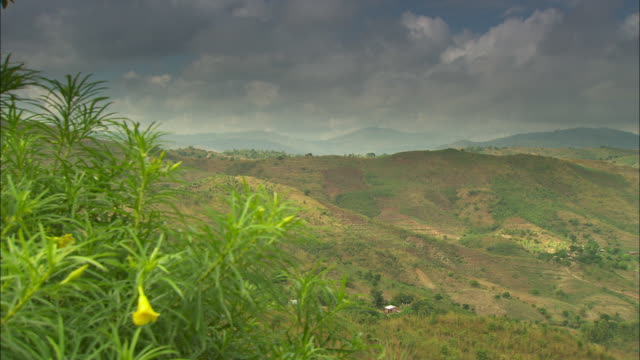 vídeos de stock e filmes b-roll de long shot over the rolling hills of the shire highlands in southern malawi. - malávi