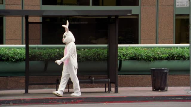 vidéos et rushes de long shot pan man in rabbit costume pacing in front of bus shelter / los angeles, ca - attendre