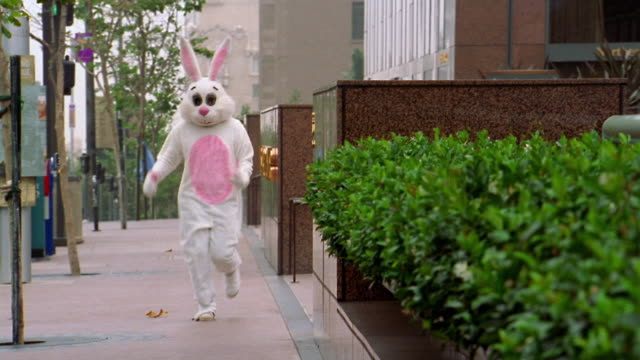 vídeos de stock, filmes e b-roll de long shot pan man in rabbit costume running down sidewalk / los angeles, ca - fantasia disfarce