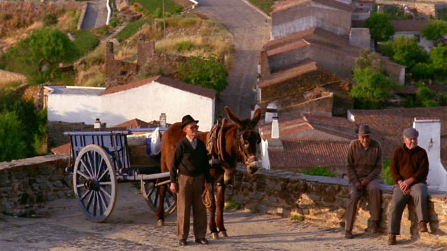 long shot pan three senior men posing with donkey cart on road / village below in background / monsaraz, portugal - traditionally portuguese stock videos & royalty-free footage