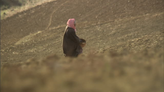 long shot pan-right - a farmer broadcasts seed over a hillside in tunisia. / tunisia - sowing stock videos & royalty-free footage