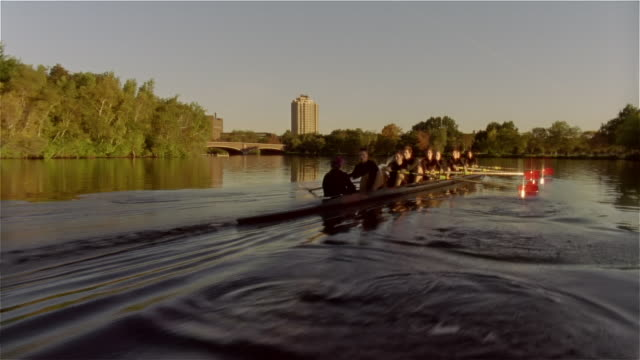 long shot past crew team rowing racing shell on charles river - rowing stock videos & royalty-free footage