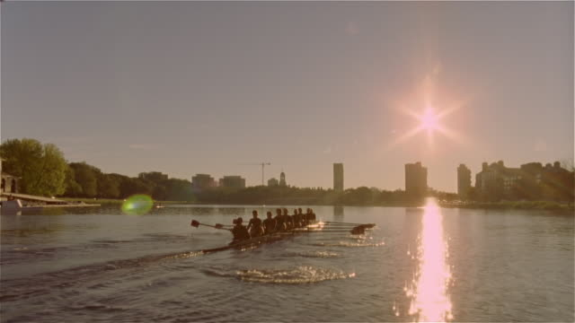 long shot past crew team rowing racing shell under bridge on charles river - rudern stock-videos und b-roll-filmmaterial