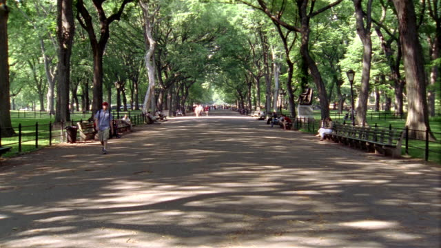 long shot people walking and sitting on park benches in the mall in central park / new york city - three wheeled pushchair stock videos & royalty-free footage