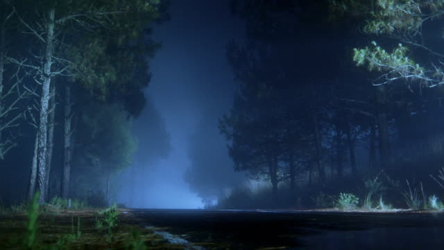 Long shot road on rainy, foggy night / headlights of SUV coming around bend / driving past CAM / Mexico