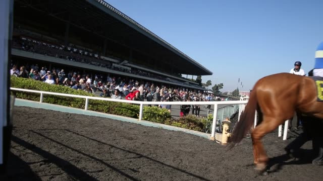 long shot spectators and horses at the final racing day at betfair hollywood park the historic betfair hollywood park racetrack is shutting its doors... - schlußtag stock-videos und b-roll-filmmaterial