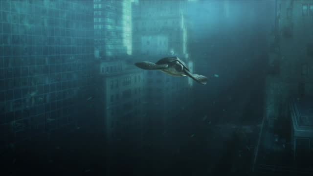 vídeos de stock e filmes b-roll de long shot static - a sea turtle swims past new york city skyscrapers in a computer-generated animation. / new york city, new york, usa - subaquático