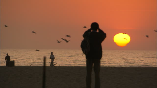 long shot static - a silhouetted man photographs the setting sun above the ocean horizon as birds fly past - astronomy stock videos & royalty-free footage
