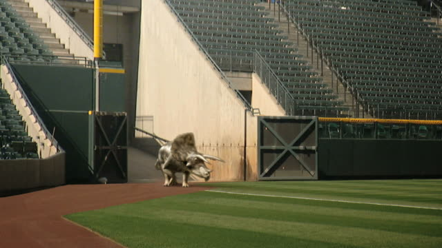 long shot static - a triceratops enters a crumbling stadium in a computer-generated animation. / denver, colorado, usa - triceratops stock videos and b-roll footage
