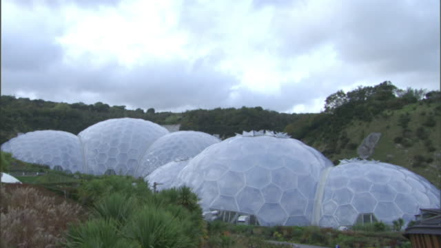Long Shot tilt-down - Lush vegetation surrounds the biodomes of the Eden Project in Cornwall. / Cornwall, UK