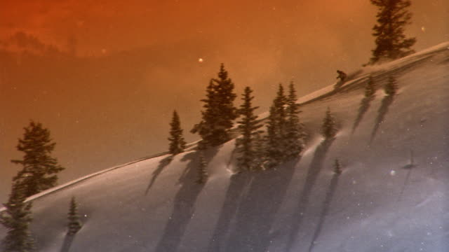 Long shot tracking shot person skiing down ridge of mountain and passing evergreen trees / Aspen, Colorado