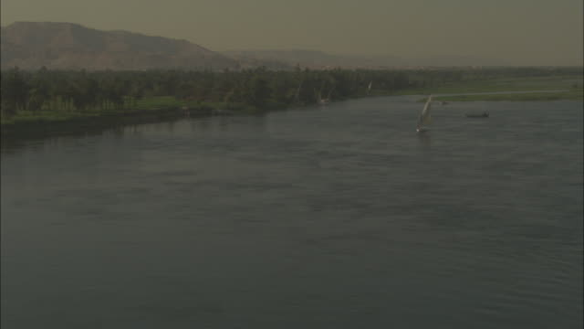 long shot, tracking-right - an aerial reveals a low altitude view of the nile river / egypt - river nile stock videos & royalty-free footage