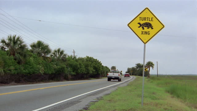 Long shot traffic on winding road with turtle crossing sign at side of road / Savannah, Georgia