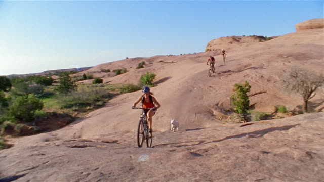 long shot two women and man mountain biking past cam / two dogs running behind bikers - moab utah stock videos and b-roll footage