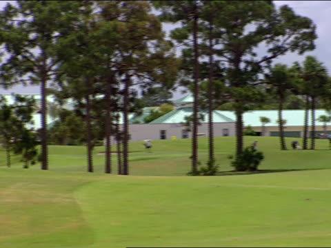 long shot - bandierina da golf video stock e b–roll