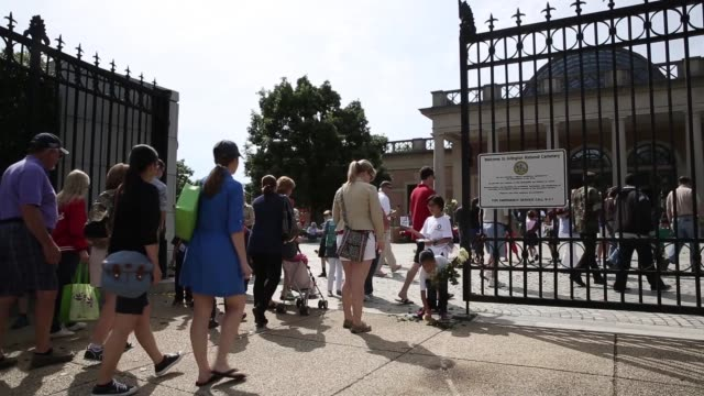 long shot volunteers with memorial day flowers including cub scouts and girl scouts from local troops help to hand out roses at the entrance to... - cub scouts stock videos and b-roll footage