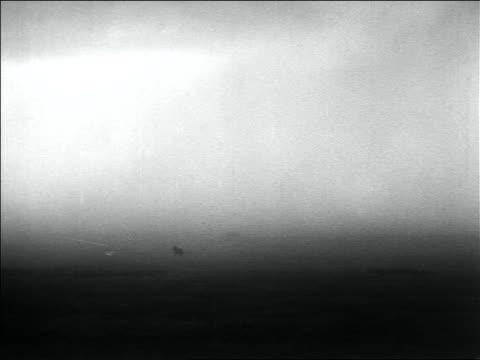 B/W 1936 long shot wide shot horse running on plain in dust storm / Dust Bowl / USA