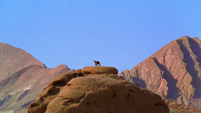 long shot zoom in rock climber on top of rock formation raising arms in triumph / Nevada