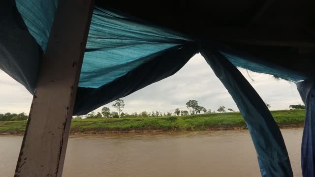vídeos de stock, filmes e b-roll de long tracking shot areas affected by deforestation on the banks of the amazon river view from riverboat a transport riverboat travels in the... - amazonas state brazil