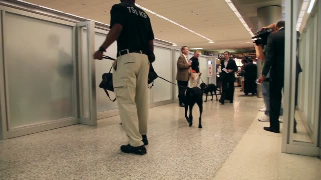 long tracking shot of k9 unit, checking passengers luggage as they go through security check. the program already in place at three other airports in... - セキュリティスキャナ点の映像素材/bロール