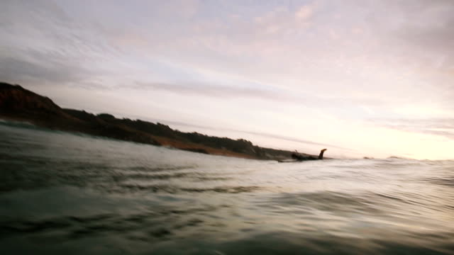 longboard paddle for wave - channel islands england stock videos & royalty-free footage