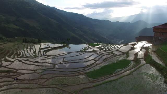 Longji Terraced Fields in Longsheng,Guilin