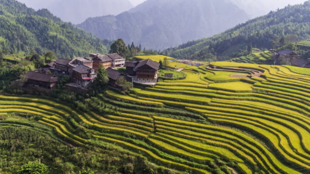 longji terraced fields in longsheng,guilin,china - rice terrace stock videos and b-roll footage