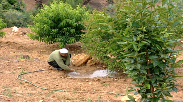 long-shot, pan-right of druze farmer irrigating an orchard. the skull cap of the farmer indicates that he is a juhhal, aka an uninitiated devotee in... - irrigation equipment stock videos & royalty-free footage