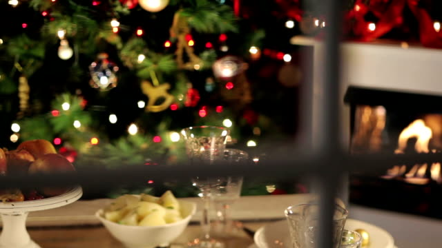 look on christmas dinner - refreshment stock videos & royalty-free footage