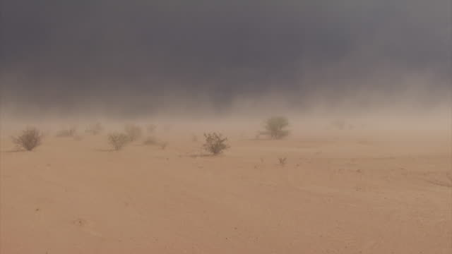 vídeos y material grabado en eventos de stock de looking across sand and desert and blowing sand in sandstorm. wind blown sand, haboob, blowing dust, desert wind. - vendaval de polvo