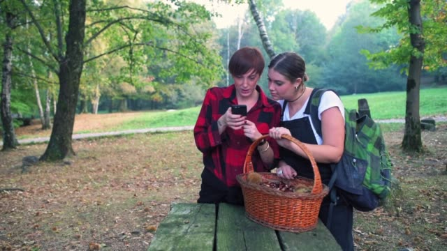 looking at smart phone - picnic table stock videos & royalty-free footage
