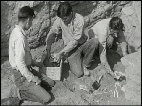 looking back through the ages - 8 of 24 - archaeology stock videos & royalty-free footage