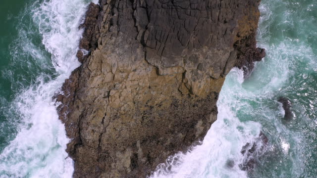looking down at waves crashing into rock as birds fly - heceta head stock videos & royalty-free footage