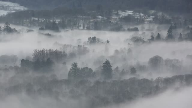 looking down into the langdale valley above valley mist formed by a temperature inversion on loughrigg, near ambleside in the lake district national park. - frost stock videos & royalty-free footage