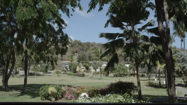 looking out from a villa / grenada, caribbean - caribbean stock videos and b-roll footage