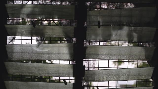 vidéos et rushes de looking out window - ouverture du diaphragme