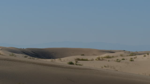 4k looking over sand dunes ripples in the sand and small animal tracks going up the side - インペリアルバレー点の映像素材/bロール