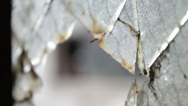 stockvideo's en b-roll-footage met looking through a broken window in an abandoned building - gluren